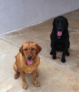 Fergie & brother Kimbo
