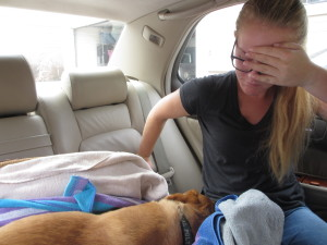 Jordan on way to emergency vet with Fergie